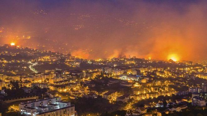 Оперативный мониторинг пожаров на о. Мадейра для МЧС России (11.08.16)