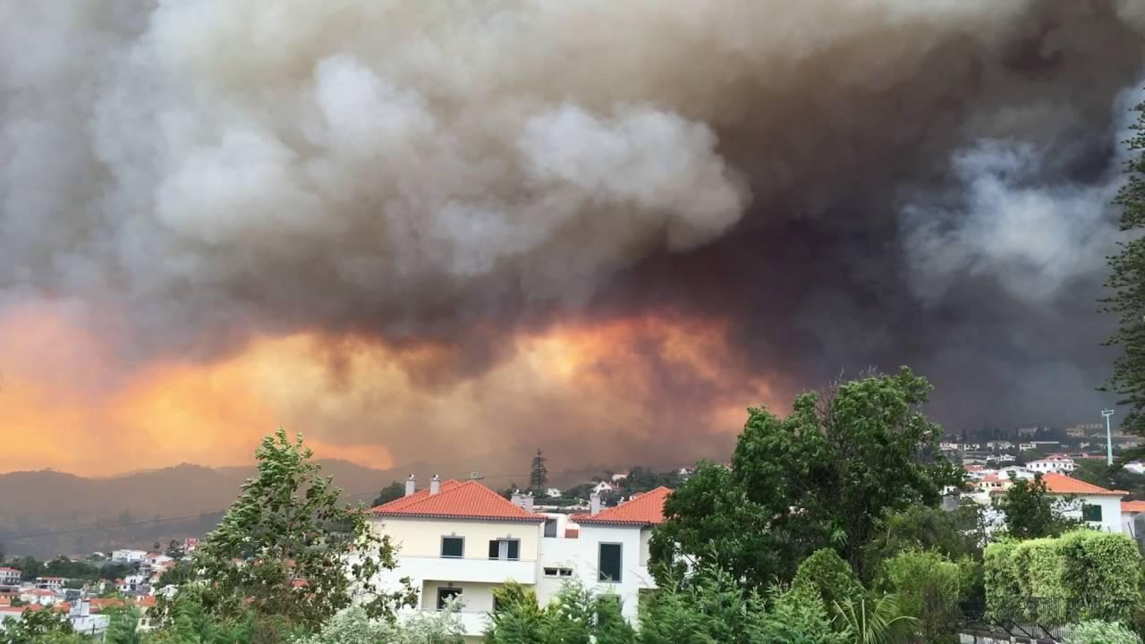 Оперативный мониторинг пожаров в Португалии для МЧС России (13.08.16)