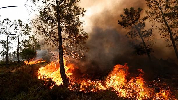Оперативный мониторинг пожаров в Португалии для МЧС России (15.08.16)
