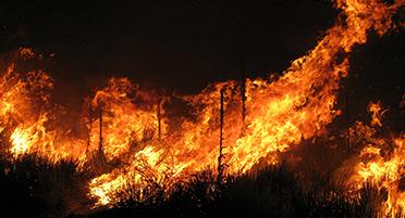 Оперативный мониторинг пожаров в Португалии для МЧС России (12.08.16)
