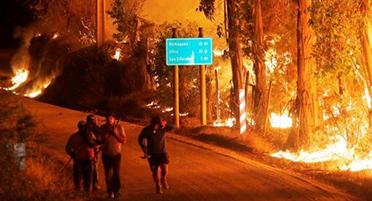 Оперативный мониторинг пожаров в Чили для МЧС России (24.01.17)