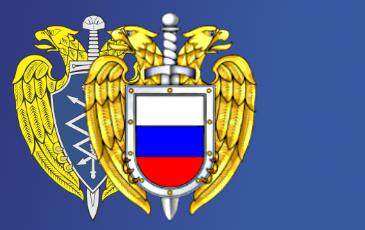 В РФ рассекретили данные иностранных и гражданских спутников по зондированию Земли