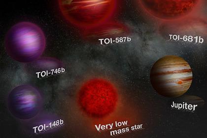 The TESS telescope has detected five unusual brown dwarfs